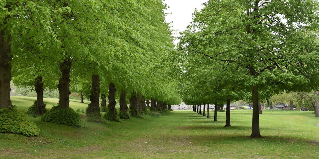 DSC_1192 Wycombe Abbey